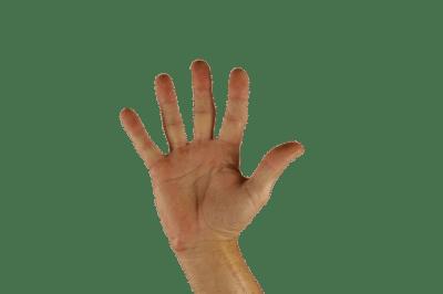 5 Dinge die ein Trauredner braucht